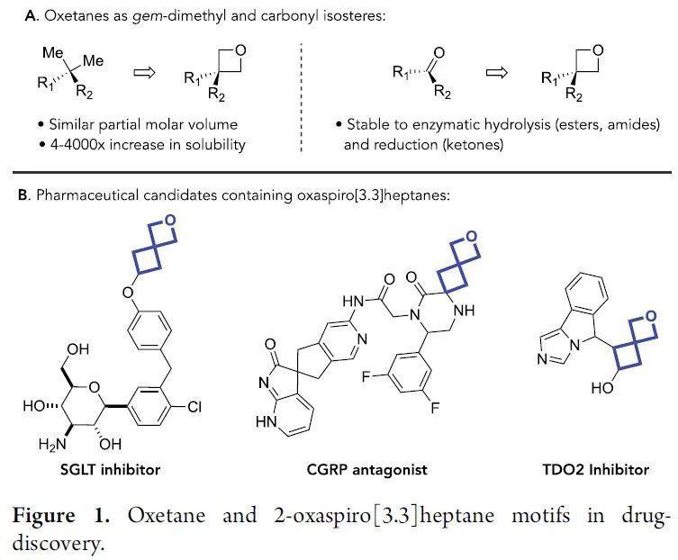 JACS:可见光三重态光敏化促进的分子间交叉[2+2]环加成反应